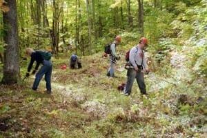 Swedetown creek trail cutting.I
